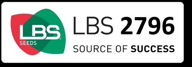 Maïs LBS 2796