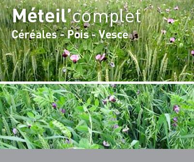 Céréales immatures LBS METEIL'Complet