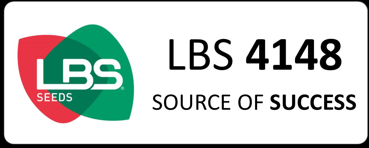 Maïs LBS 4148