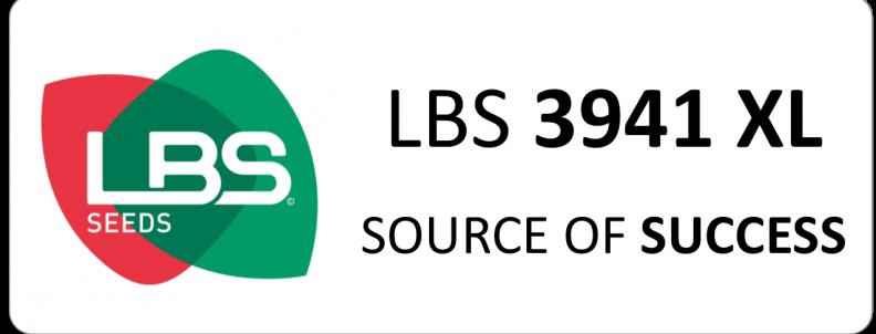 LBS 3941 XL