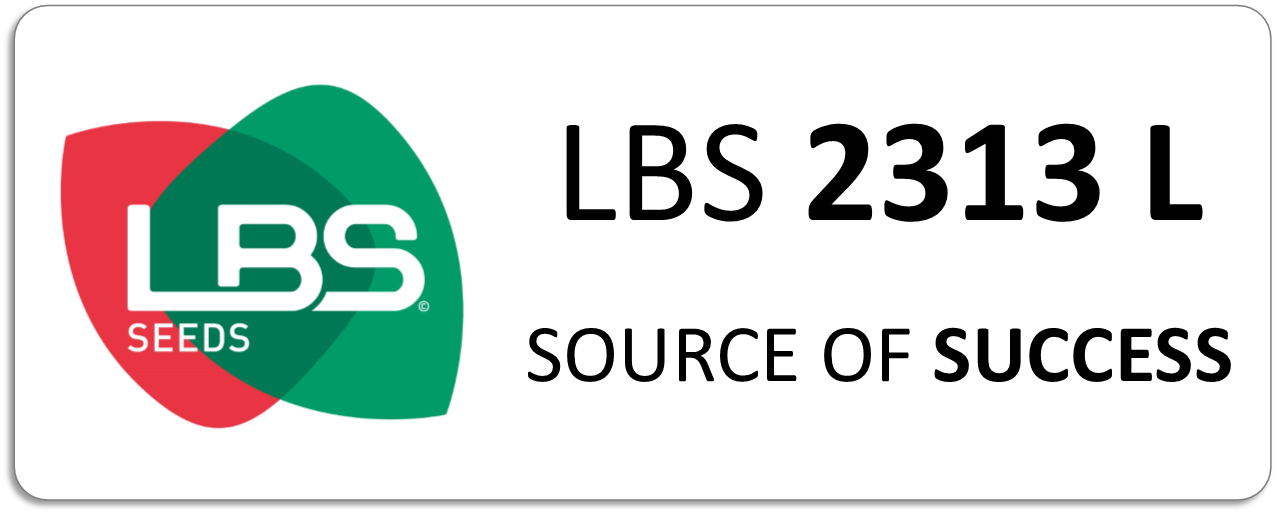 TOURNESOL LBS 2313 L