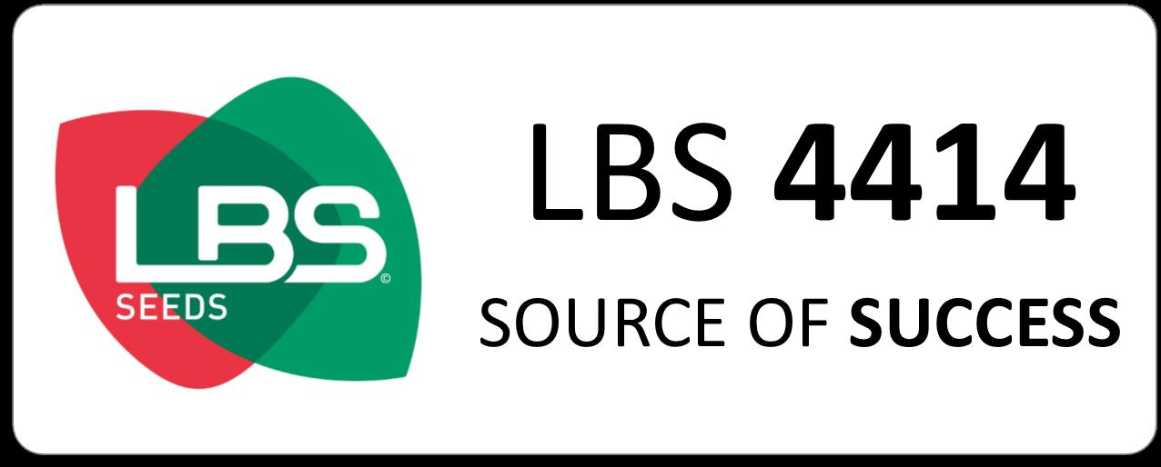 Maïs LBS 4414